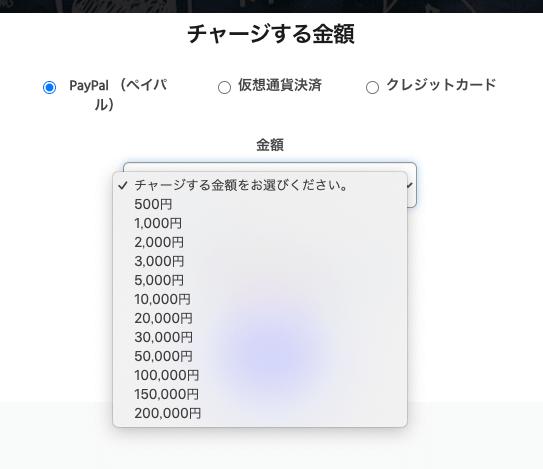 snsヘルパーチャージ金額500円